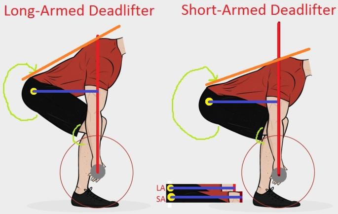 long-arm-short-arm-deadlift